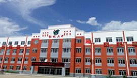 敦化第六中学