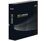 RG-BDS大数据安全平台-大数据安全平台